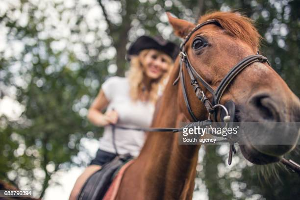 Cowgirl on brown horse