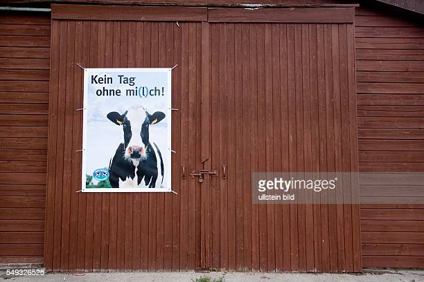 GERMANY LOWER SAXONY ECHEM Cowshed