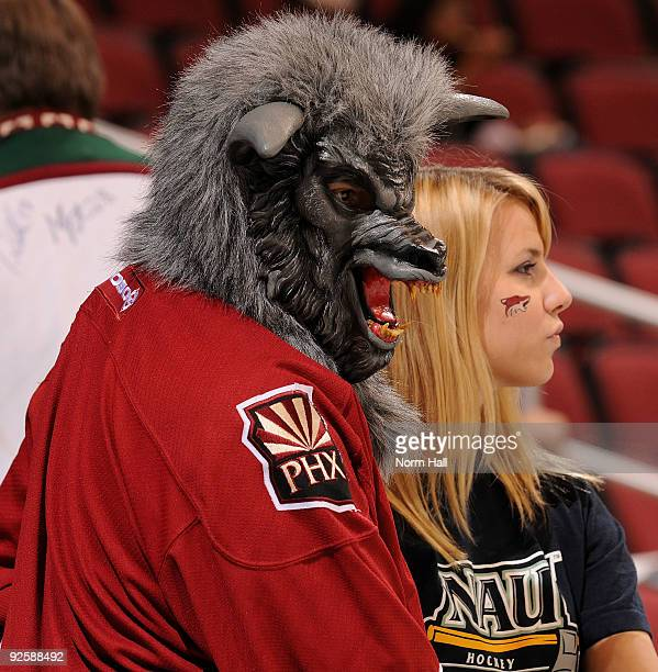 A coyotes fan dressed in a Halloween costume watches warmups just prior to the Anaheim Ducks at Phoenix Coyotes game on October 31 2009 at Jobingcom...