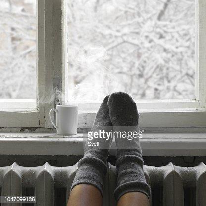 Cozy winter still life : Stock Photo