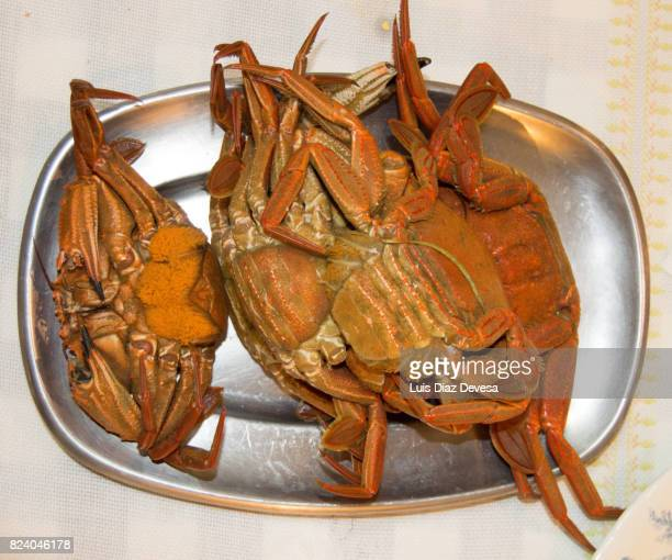 crabs for Christmas dinner