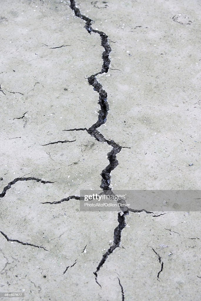 Cracked, dry earth : Stock Photo