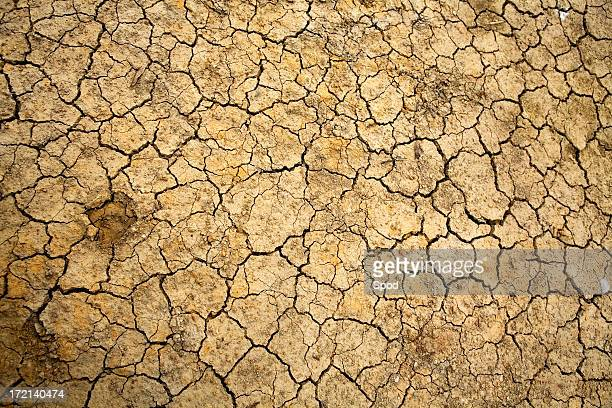 Cracked dry earth showing global warming