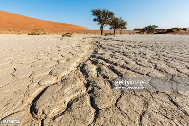 Cracked earth in dried lake bed in desert landscape
