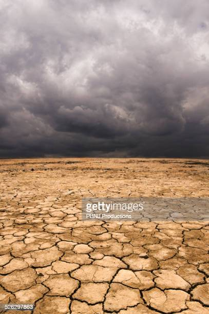 Cracked earth under cloudy sky in desert landscape