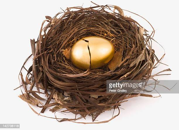 Cracked gold egg in bird's nest
