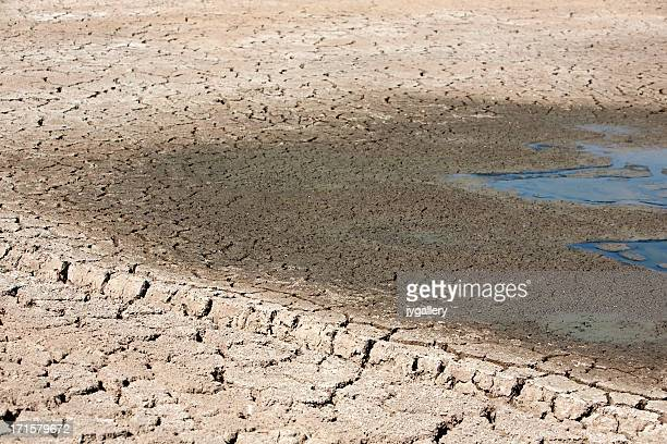 Cracked ground with dry mud around watering hole