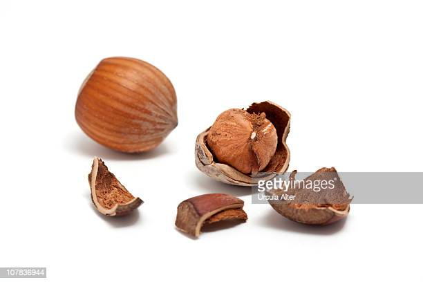 cracked hazelnuts