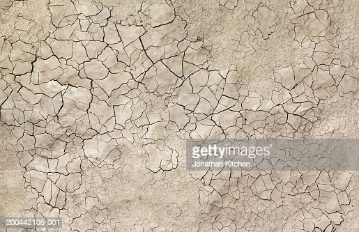 Cracked mud, close-up, overhead view
