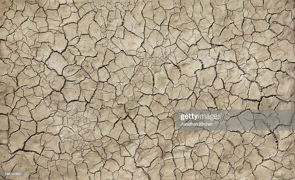 Cracked Mud : Stock Photo