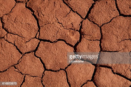 Cracked Mud Texture : Stock Photo