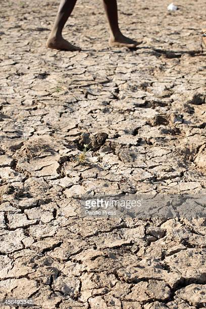Cracked soil caused by lowering of water level at Omo River as one water source of Gibe III Dam Gibe III Dam Africas Tallest Dam with installed...