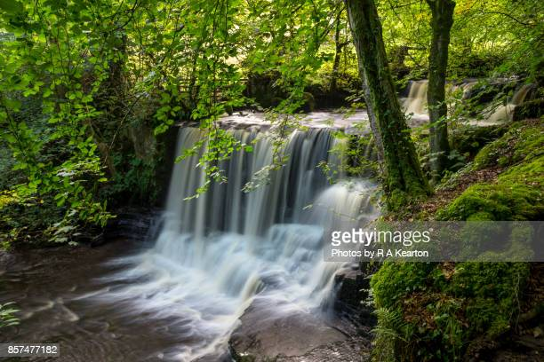 Crackpot falls, Swaledale, Yorkshire Dales, England
