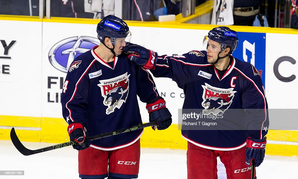 Craig Cunningham #14 of the Springfield Falcons congratulates teammate Alex Grant #4 after Grant's goal against the Providence Bruins during an American Hockey League game at the Dunkin' Donuts Center on November 1, 2015 in Providence, Rhode Island. The Falcons won 5-2.