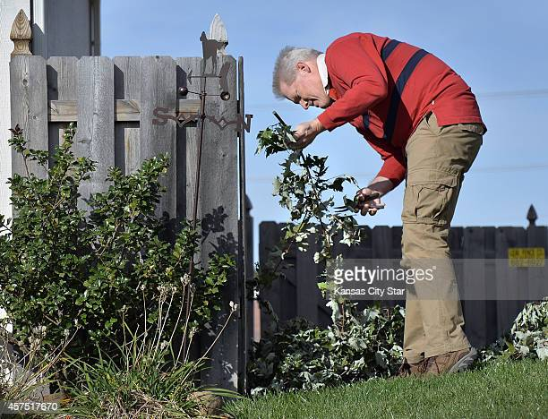 Craig Hoffman of Lansing Kan cuts up some trimmings in his front yard on Monday Oct 6 2014 Lower back pain plagued Hoffman for years but an...