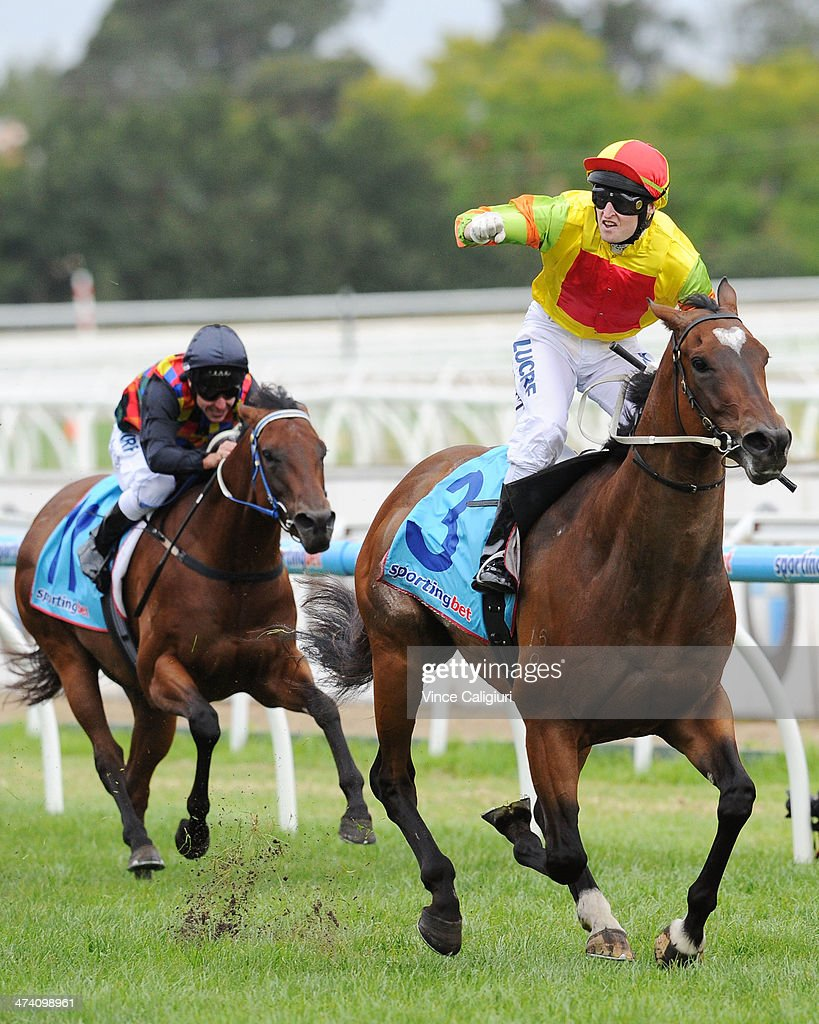 Craig Newitt celebrates winning aboard Lankan Rupee in Race 8, the Sportingbet Oakleigh Plate during Blue Diamond Stakes Day at Caulfield Racecourse on February 22, 2014 in Melbourne, Australia.