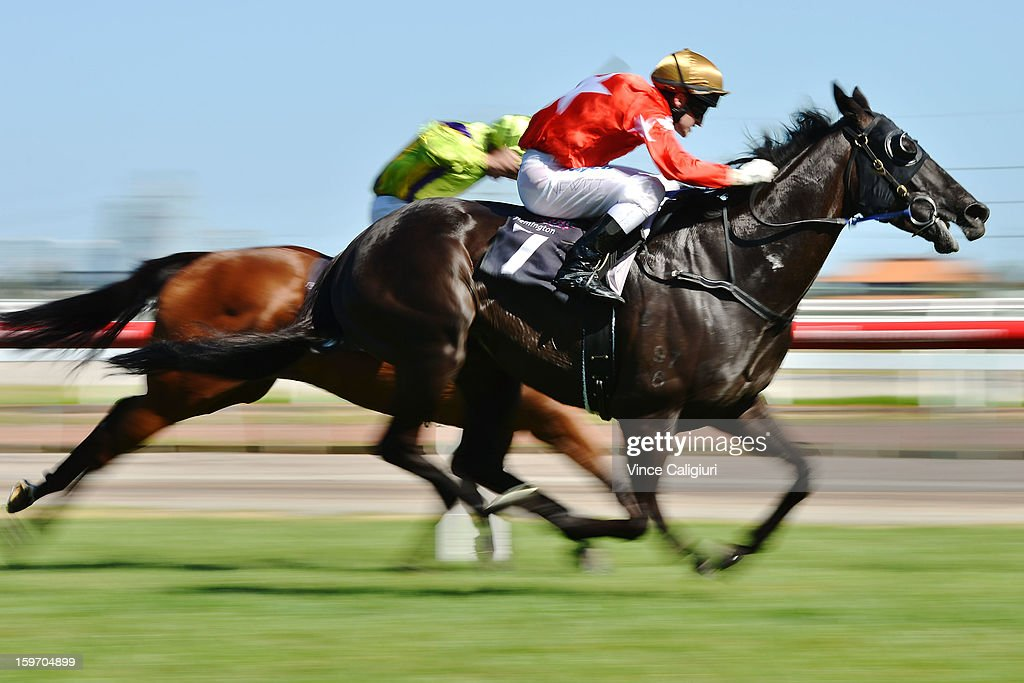 Craig Newitt rides Kutchinsky for a win in the Piping Lane Handicap during Melbourne racing at Flemington Racecourse on January 19, 2013 in Melbourne, Australia.