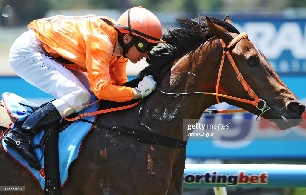 Craig Newitt riding Clevadude wins the Sportingbet Plate during Melbourne racing at Moonee Valley Racecourse on December 29, 2012 in Melbourne, Australia.