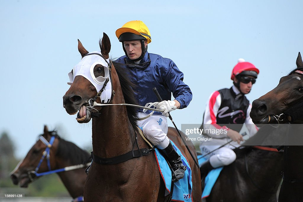 Craig Newitt riding General Peekay after winning the Robert Taranto Handicap during Caulfield racing at Caulfield Racecourse on January 5, 2013 in Melbourne, Australia.