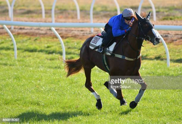 Craig Williams riding Admire Deus from Japan during a trackwork session at Werribee Racecourse on October 3 2017 in Melbourne Australia