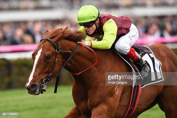 Craig Williams riding Bon Aurum wins Race 4 The Sofitel during Melbourne Racing at Flemington Racecourse on September 10 2016 in Melbourne Australia
