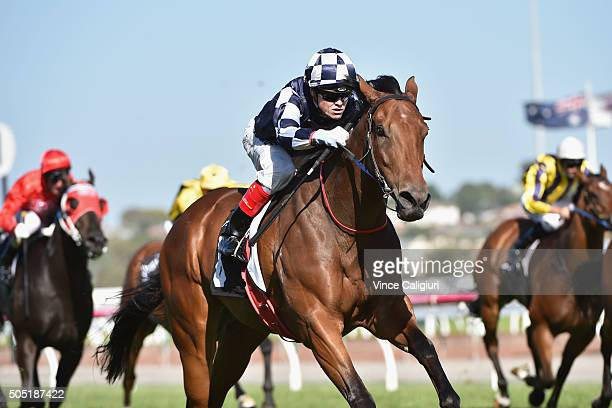Craig Williams riding Bullpit wins Race 9 during Melbourne Racing at Flemington Racecourse on January 16 2016 in Melbourne Australia