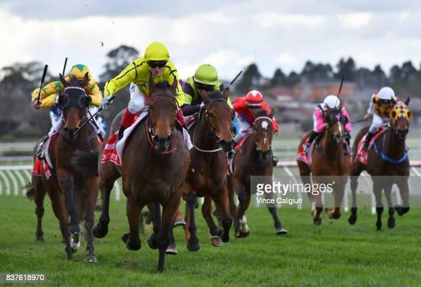 Craig Williams riding Carraig Aonair wins Race 5 during Melbourne Racing at Sandown Hillside on August 23 2017 in Melbourne Australia