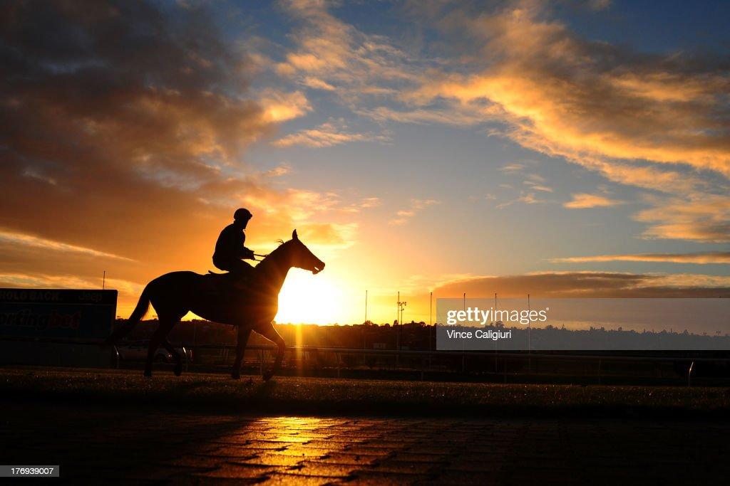 Craig Williams riding Commanding Jewel during a trackwork session at Moonee Valley Racecourse on August 20, 2013 in Melbourne, Australia.