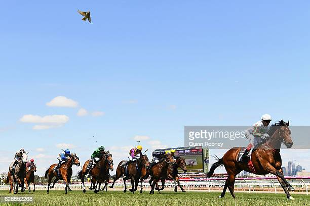 Craig Williams riding Divine Mr Artie wins Race 4 the Plenary Group Handicap during Melbourne Racing at Flemington Racecourse on December 10 2016 in...