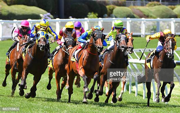 Craig Williams riding Domino Vitale winning Race 5 during Melbourne Racing at Moonee Valley Racecourse on January 21 2017 in Melbourne Australia