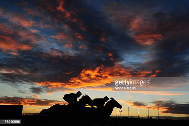 Craig Williams riding Harpsund and Michael Rodd riding Kinesthetic during a trackwork session at Moonee Valley Racecourse on August 20 2013 in...