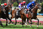 Craig Williams riding Holler wins Race 7 the Jeep Australia Stakes during Melbourne Racing at Moonee Valley Racecourse on January 23 2016 in...