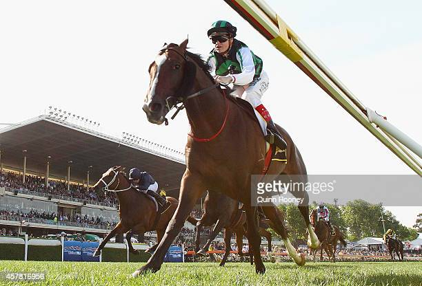 Craig Williams riding Hooked leads the field across the line to win the Scweppes Crystal Mile during Cox Plate Day at Moonee Valley Racecourse on...