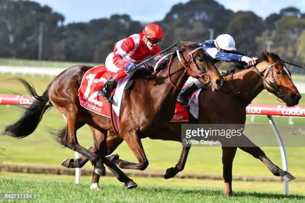 Craig Williams riding Ubin Thunderstruck defeats Ben Melham riding Crocodile Rock in Race 7 during Melbourne Racing at Sandown Hillside on August 30...