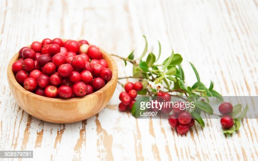 Cranberries : Stock Photo