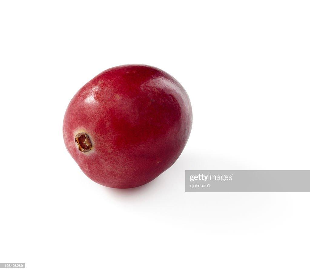 Cranberry : Photo