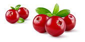 Cranberry with leaves. Group of fresh berries isolated on white. Full depth of field.