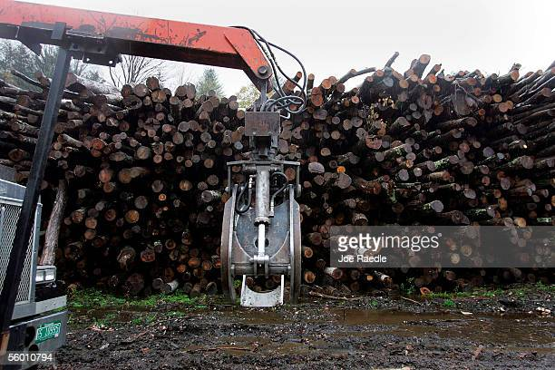 A crane drives past logs that are to be used for firewood at Colton Enterprises Inc October 25 2005 in Pittsfield Vermont With home heating oil...