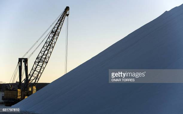 A crane is seen beside a huge pile of salt collected from dried ponds at the Exportadora de Sal company plant in Guerrero Negro Baja California Sur...