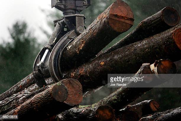 A crane is used to pickup logs that are taken to be sawed into firewood size before being split at Colton Enterprises Inc October 25 2005 in...