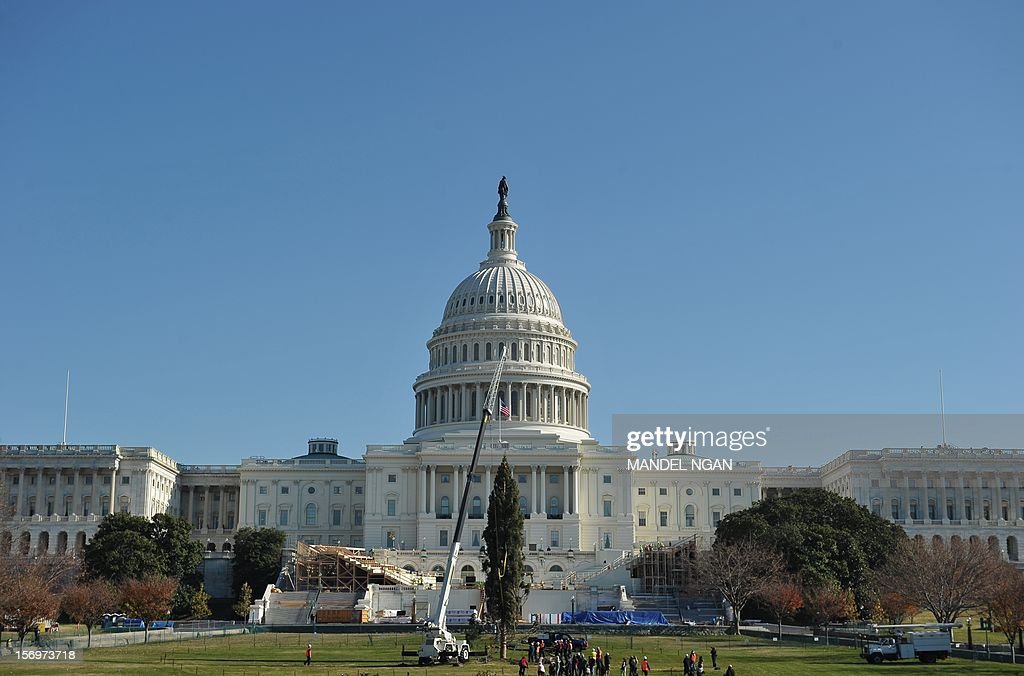 A crane lowers the Capitol Christmas tree into position on the West Lawn of the US Capitol on November 26, 2012 in Washington. The 65-foot tree is from the White River National Forest in Colorado. AFP PHOTO/Mandel NGAN