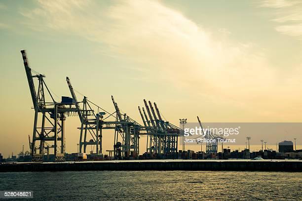 Cranes of the Port of Hamburg, Germany