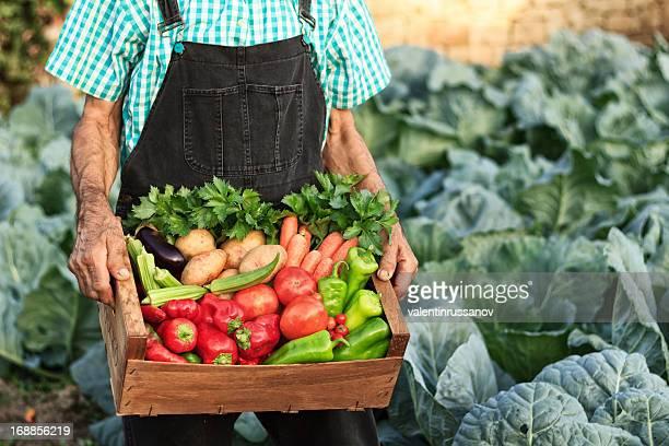 Boîte avec légumes