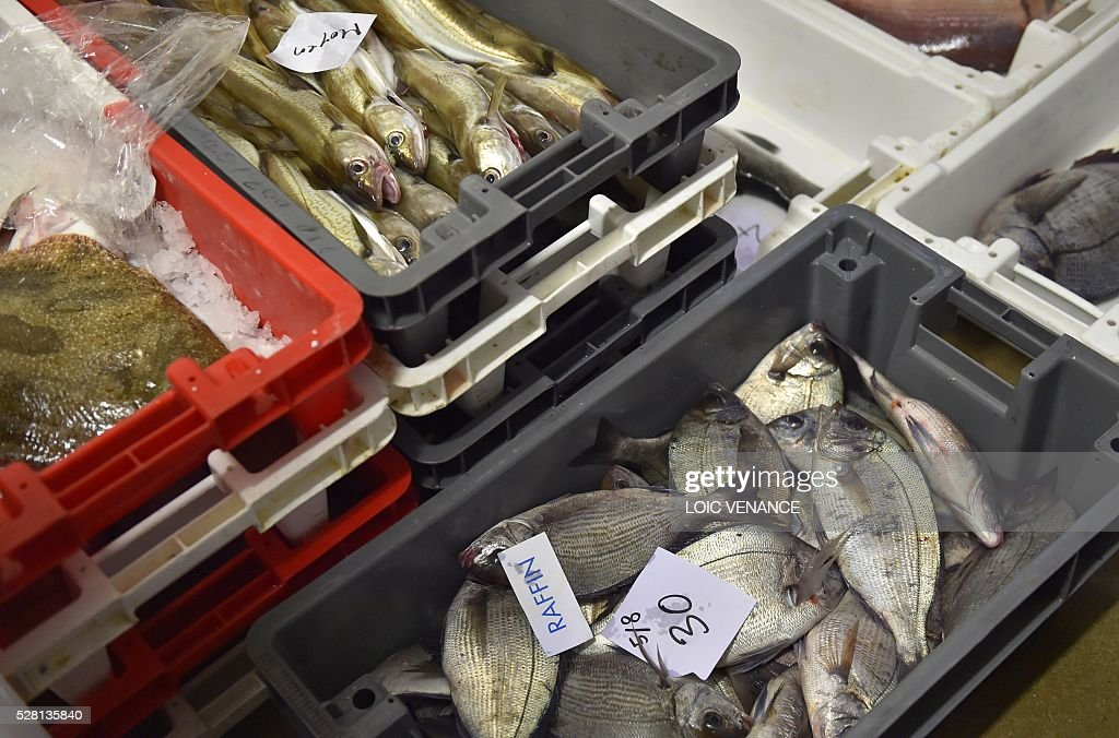 Crates of fish are displayed during a fish sale auction in Saint-Gilles-Croix-de-Vie, western France, on May 4, 2016. / AFP / LOIC