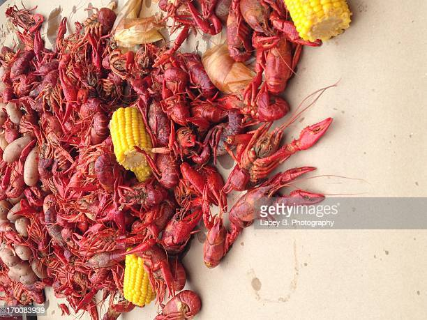 Crawfish!