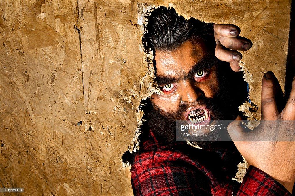 crazy werewolf : Stock Photo