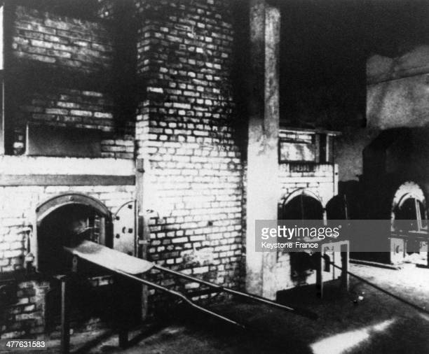 the history and atrocities committed at the notorious auschwitz concentration camp A jewish woman who escaped the gas chambers of the auschwitz concentration camp  the notorious auschwitz death camp  committed massive atrocities,.