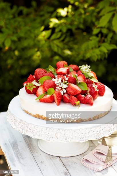 Creamy cheesecake with strawberries on a garden table