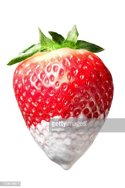 Creamy Strawberry