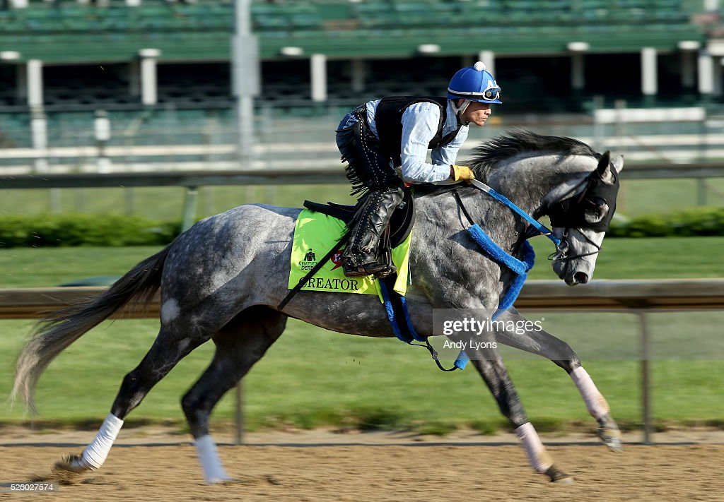 Creator runs on the track during morning training for the 2016 Kentucky Derby at Churchill Downs on April 29, 2016 in Louisville, Kentucky.